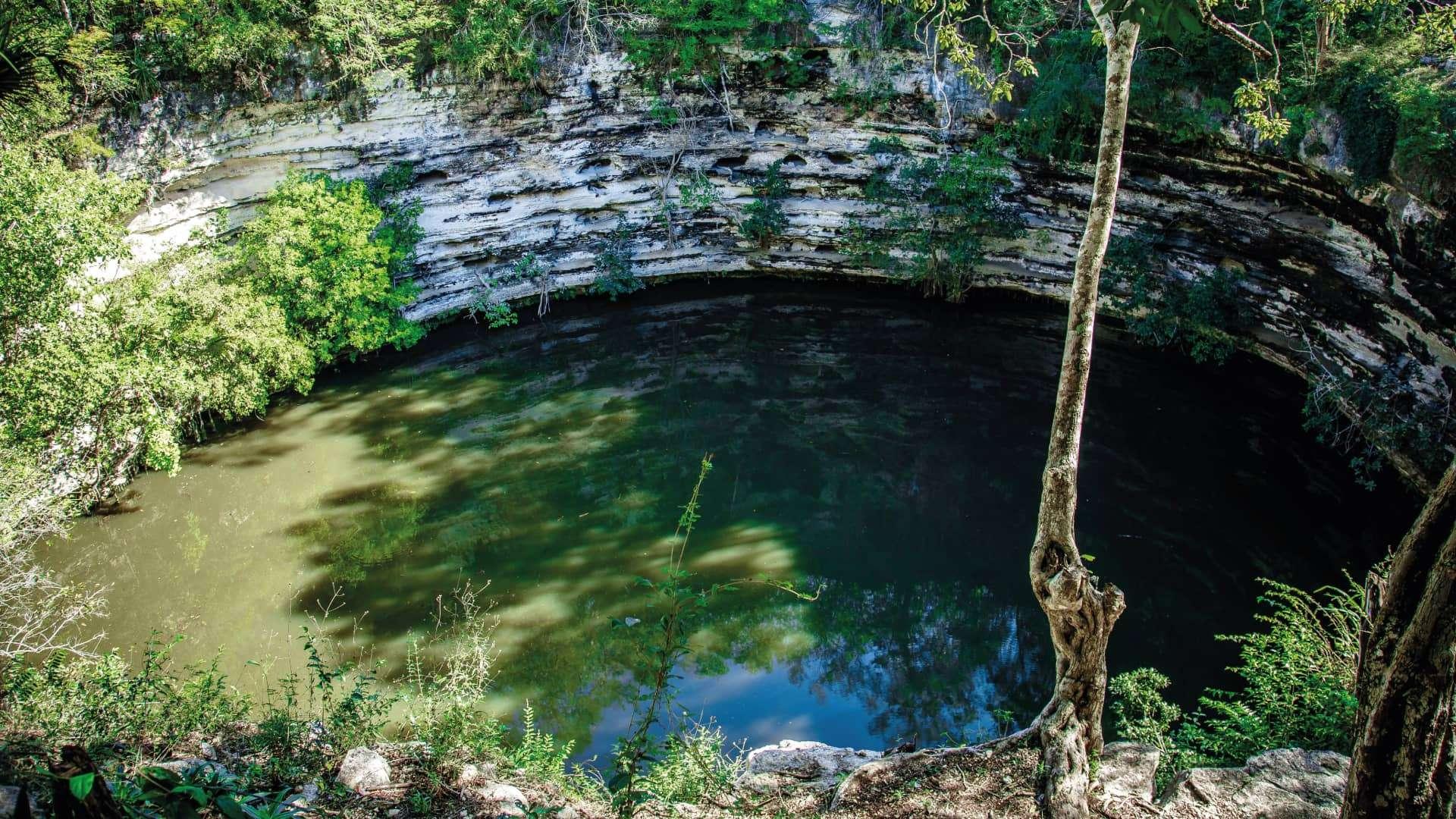 The Sacred Cenote in Chichen Itza