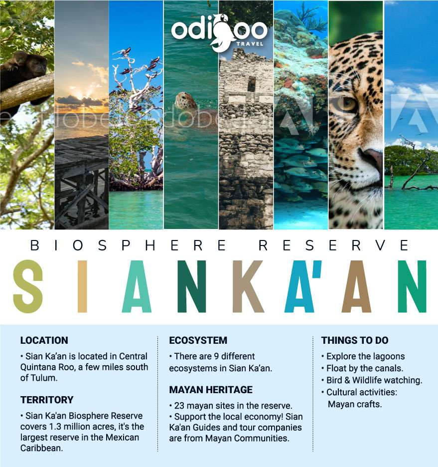 Things to do in Sian Ka'an Biosphere Reserve