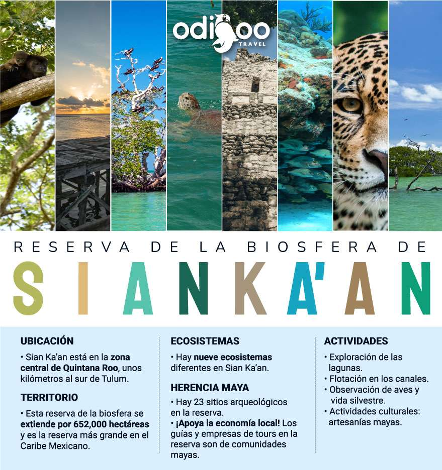 Excursiones en la Reserva de la Biósfera de Sian Ka'an