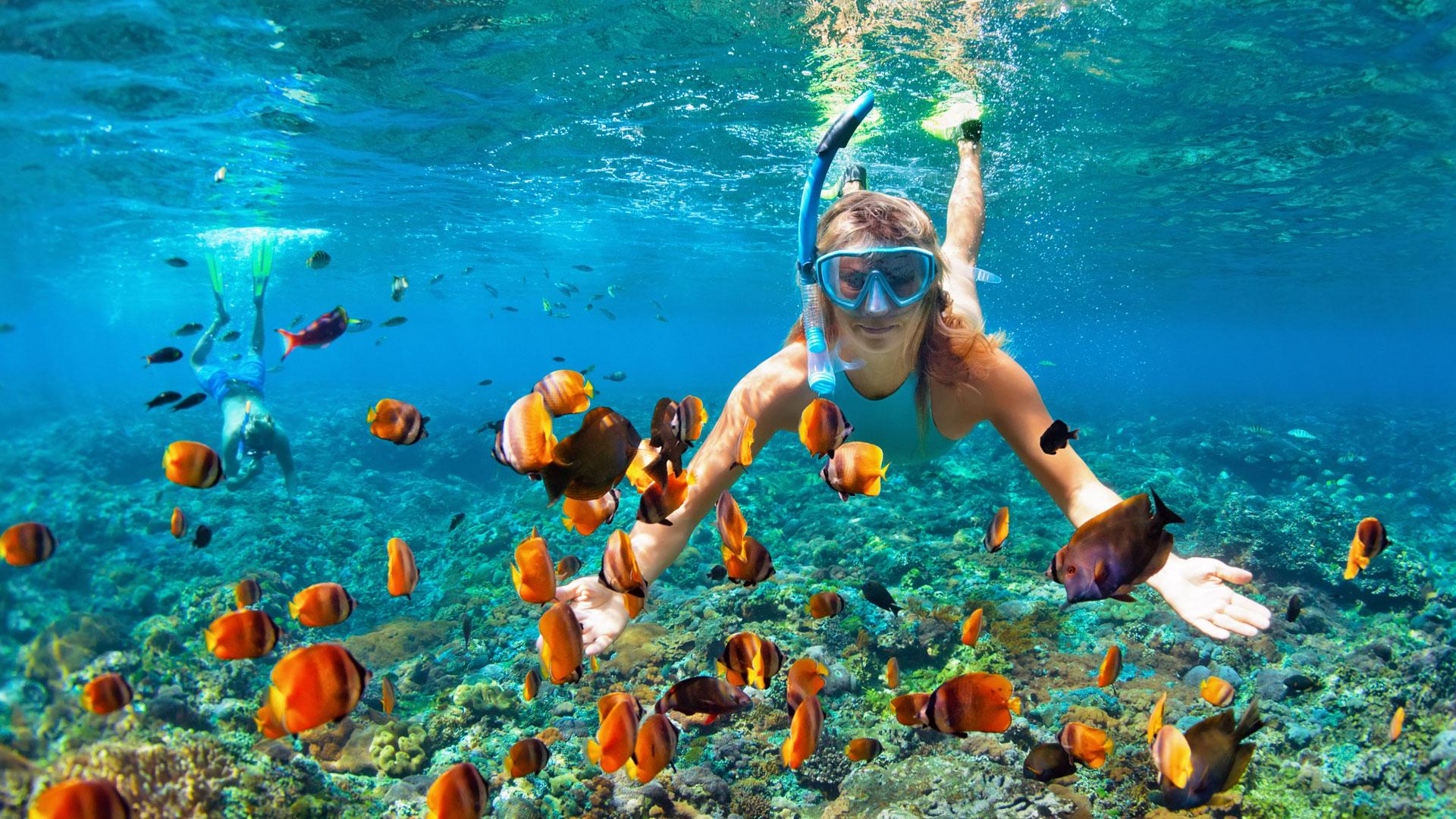 Actividades de ecoturismo en Cancún