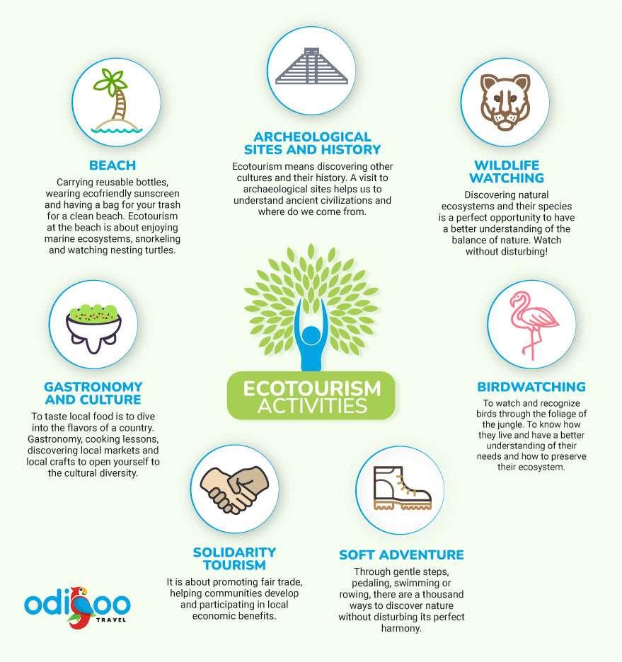 Ecotourism activities infographic
