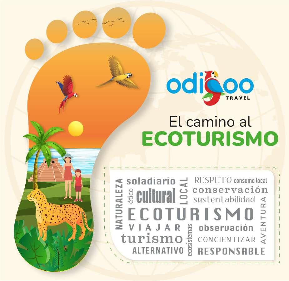 Infografía de ecoturismo en Cancún y la Riviera Maya