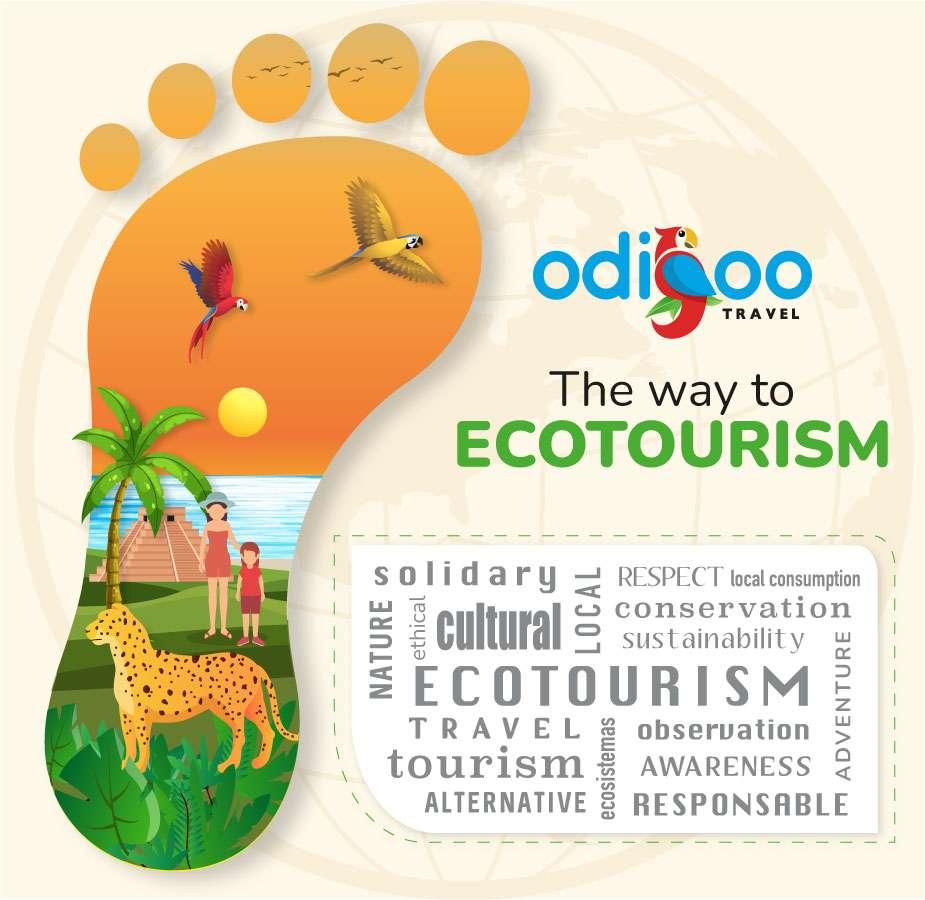 Ecotourism infographic
