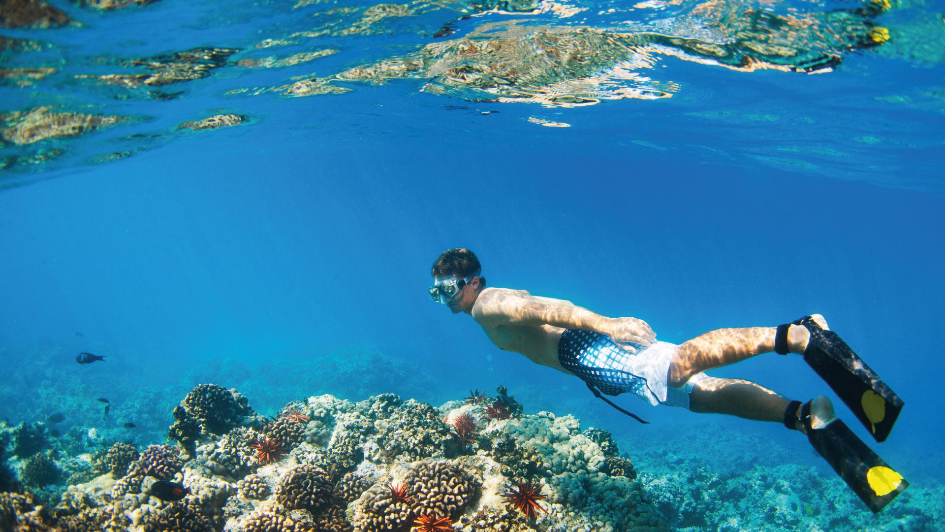 Puedes nadar tranquilamente en las playas de Cancun