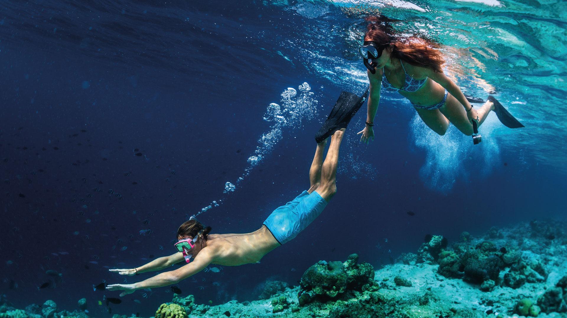 Snorkel en las playas de Cancún y el Caribe Mexicano