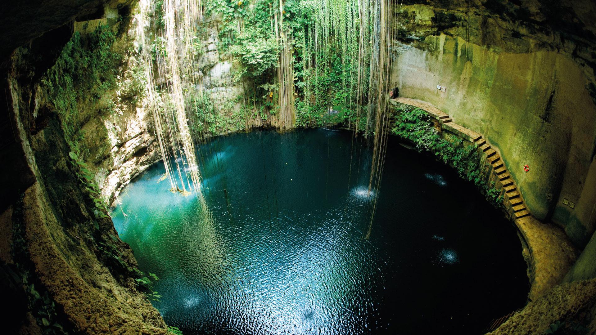 Cenotes en Cancún y la Riviera Maya