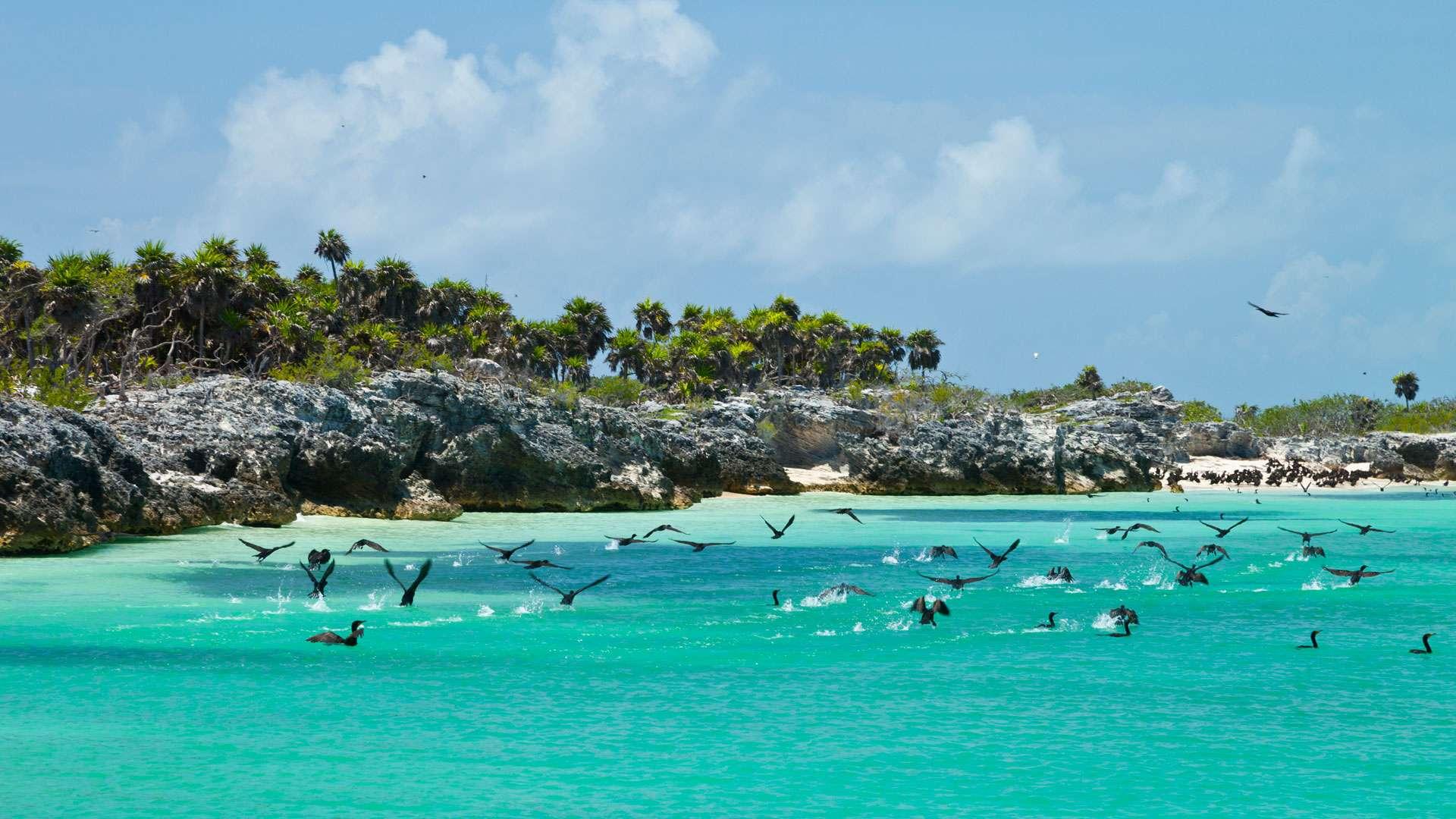 Exploring Cancun and The Riviera Maya